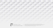 Abstract White & Grey Color Paper Cut Design Pattern Background With Copy Space. You Can Use For Cover Design, Artwork, Ad, Poster, Presentation. Simple & Minimal Pastel Design. Vector Illustration