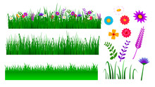 Set Of Green Grass Border Illustration Or Lanscape Grass With Blossom Or Green View Grass With Flower Concept. Eps 10 Vector, Easy To Modify