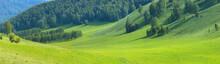 Green Meadows And Mountain Slopes, Summer