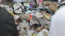 Discarded Plastic Trash Items Sorted After Beach Cleanup In The Pacific