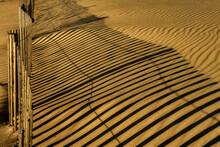 USA, New Jersey, Cape May National Seashore. Fence Shadow On Shore Sand.