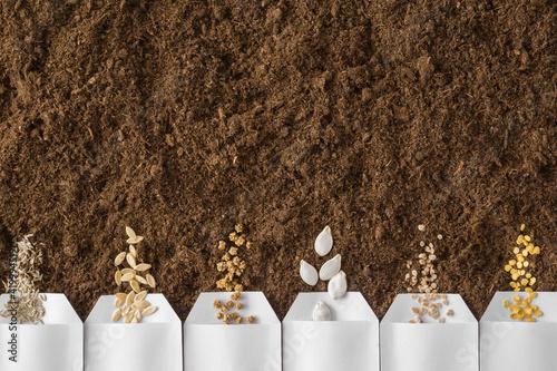 Obraz na plátně White packs of salad, cucumber, beet, pumpkin, tomato, paprika seeds on fresh dark soil