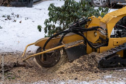 Obraz na plátně Tree stump removing process with yellow stump grinder