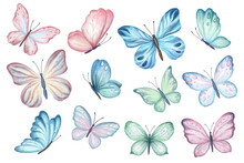 Set Of Butterflies Isolated On White Background. Watercolor. Illustration. Template, Blue, Yellow, Pink And Red Butterfly Spring Illustration.