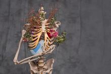 Torso, Skeletal Bones, And Dried Flowers Inside.