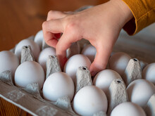 White Raw Chicken Eggs In Egg Cardboard Box