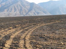El Dorado Fire Aftermath Yucaipa California With Truck Tracks In The Ashes