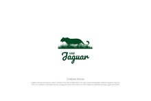 Wild Tiger Leopard Jaguar Panther Puma Cheetah With Grass Savanna For Wildlife Logo Design Vector