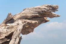 High Dry Stump Standing Against Blue Sky