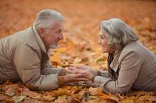 Happy Senior Couple Lying On Autumn Leaves