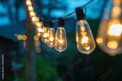 Stampa su Tela Night time string of edison lights