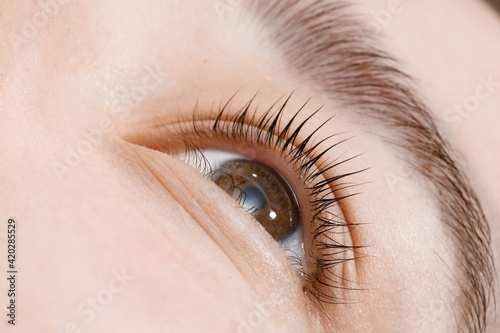 Obraz na plátně Close up view of beautiful female eye with long natural lashes