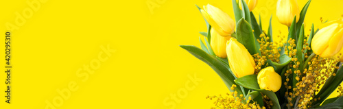 Floral bouquet on wide banner. Yellow tulips and mimosa, green leaves