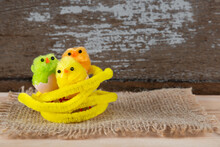 Three Little Colored Chicks Easter
