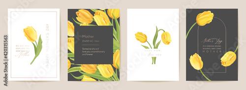 Fototapeta Mother day floral spring postcard. Greeting realistic tulip flowers template, modern flower background obraz
