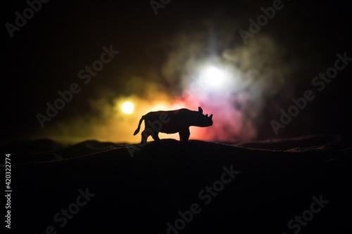 Fototapeta Rhino miniature standing at foggy night