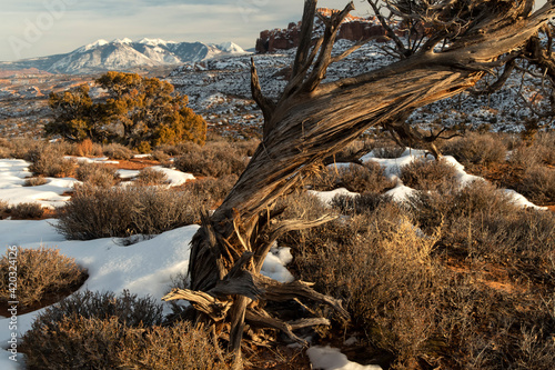 Arches National Park in winter;  Utah Fotobehang