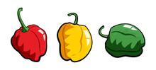 Scotch Bonnet Pepper Cartoon Illustration Vector Icon Set
