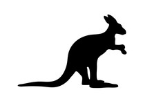 Silhouette Of A Australian Kangaroo On White Background