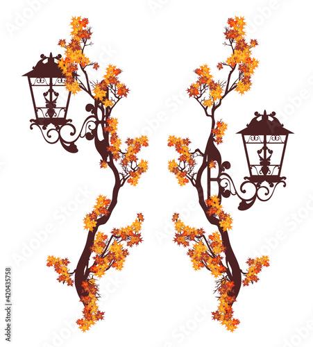 Obraz na plátně street light among autumn tree branches forming vertical borders - fall season u