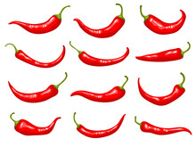 Red Peppers. Hot Delicious Natural Mexican Traditional Product Cooking Ingredients Natural Spice For Preparing Food Recent Flat Illustrations Of Peppers