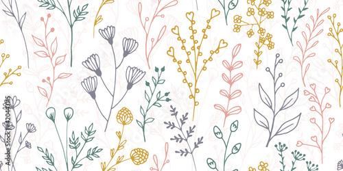 Fototapeta Field flower sprouts botanical vector seamless pattern