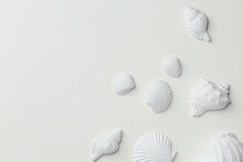 Set Of White Monochrome Assorted Seashells On White Paper Top View. Different White Seashells From Above, Calm And Relaxed Sea Summer Beach Concept. Spa And Resort Background, Space For Text