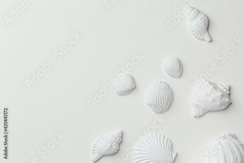 Canvas-taulu Set of white monochrome assorted seashells on white paper top view