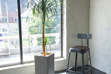 A Flowerpot And Chair Are Placed In The Window Of The Living Room, Which Is Finished With Gray Concrete.