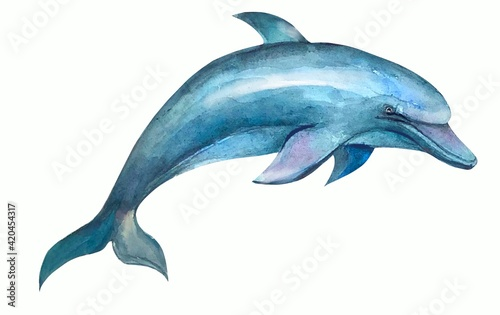 dolphin isolated on white background: Wallpaper Mural
