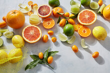 Citrus In Summer