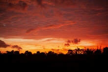 Sunset Jungle Red Sky Clouds Tropical Asia Rainforest