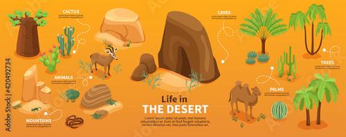 Obraz Desert Isometric Infographics - fototapety do salonu