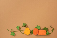 Colorful Pumpkins. Halloween Or Thanksgiving Concept