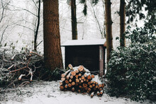 Winter Landscape With Wood Trunks In Front Of Garden Shed Covered In Snow