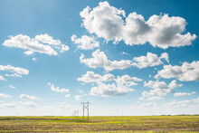 Electricity Pylons On Wheat Field In Sunny Day