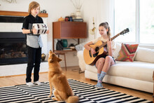 Kids Play Instruments For Family Dog