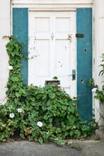 Doorway And Bindweed