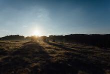 Sunlit Field In The Morning