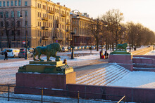 Sculptures Of Guard Lions Near St. Petersburg Admiralty At Sunset In Spring
