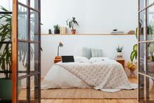 Interior Of Cozy Bedroom With Green Plants