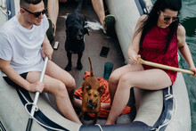 Friends With Their Dogs In A Boat