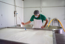 Worker Controlling The Temperature Of The Milk With A Thermometer.