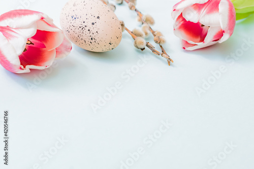 Fototapeta Easter composition with pink tulips and eggs on color background obraz na płótnie