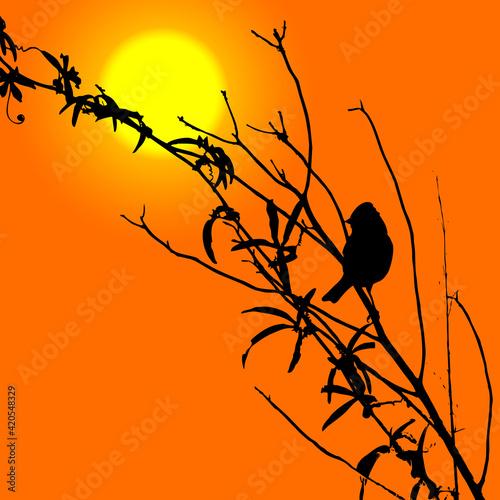 Photo Pájaro en las ramas