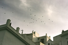 Close Up Of Rooftops With Birds In The Stormy Sky, Vejer De La Frontera