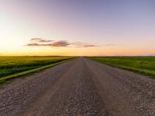 Empty Ranch Road Go Through Canola Field