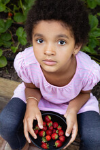 Pretty Mixed Race Girl With Short Curly Kinky Hair Holding A Container Of Strawberries Picked From Her Backyard Garden