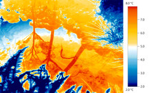 Thermal Imaging Thermogram Of Global Warming Of Natural Environment, Lake, Plants.