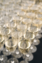 Champagne Glasses Filled With Champagne, Ready To Be Served To Wedding Guests